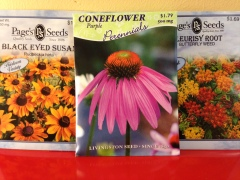 Earth Day Seeds 15